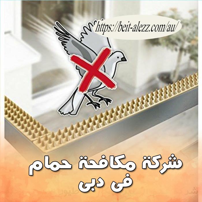 شركة مكافحة حمام في دبي