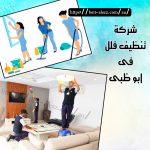 شركة تنظيف فلل في أبوظبي  0501175141