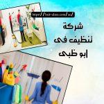 شركة تنظيف في أبو ظبي 0501175141