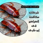 شركات مكافحة الصراصير أبو ظبي 0501175141